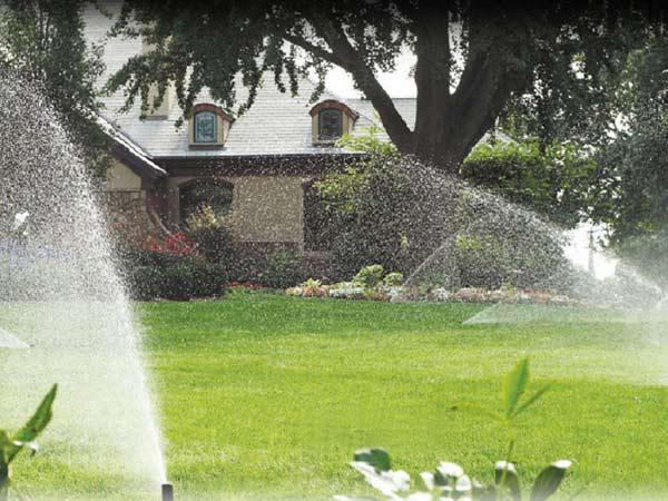 Costo-irrigatori-a-goccia-orto-cernusco-sul-naviglio